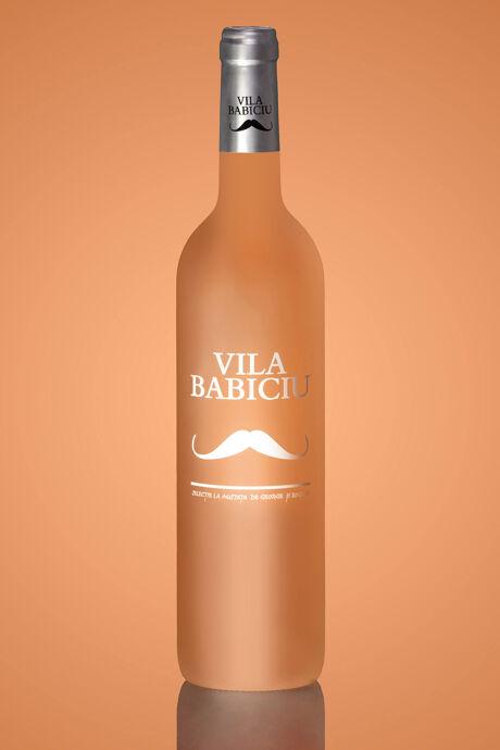 Vila Babiciu Wine Project