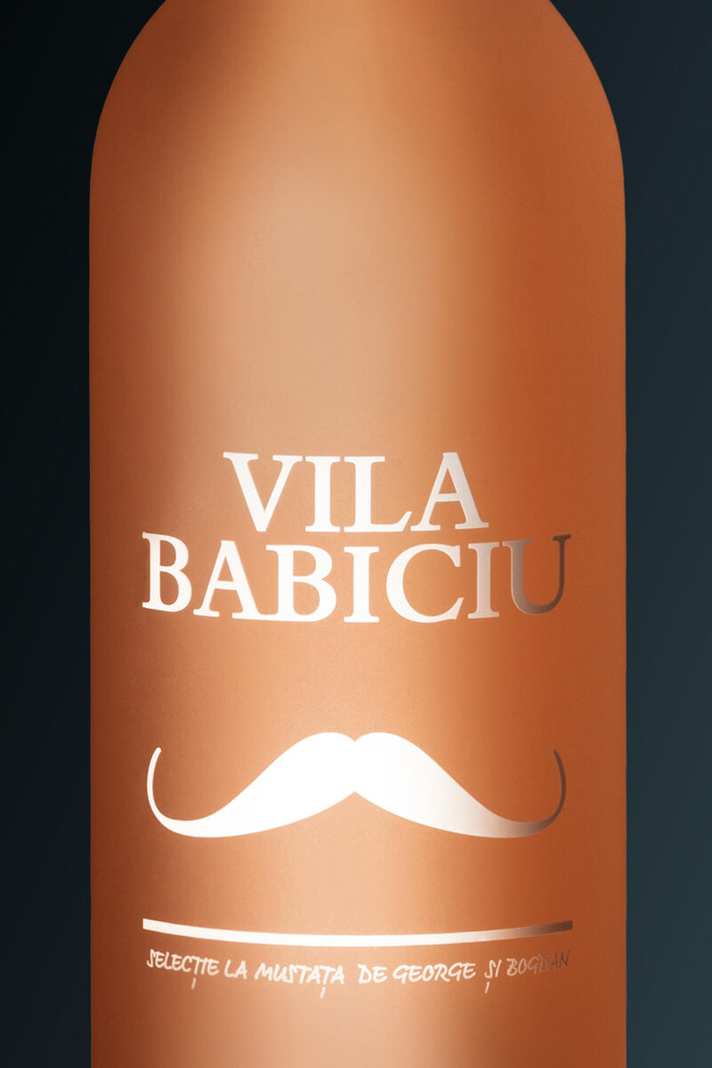 Vila Babiciu Wine Project